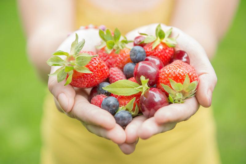 Dieta y alimentación